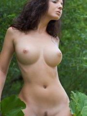 Pictures of a busty brunette girl showing her naked body in the woods